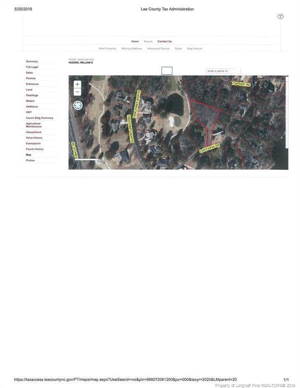 229 Lakeview Drive Drive, Sanford, NC 27332 (MLS #607738) :: Weichert Realtors, On-Site Associates