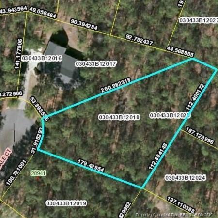 18 Pinedale Court, Wagram, NC 28396 (MLS #609851) :: Weichert Realtors, On-Site Associates