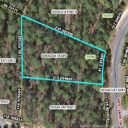 20 Westlake Drive, Wagram, NC 28396 (MLS #609852) :: Weichert Realtors, On-Site Associates