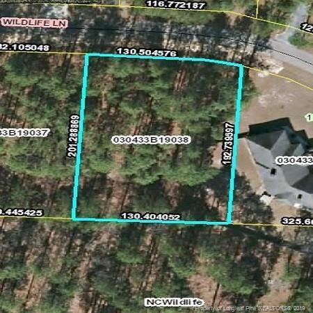 38 Wildlife Lane, Wagram, NC 28396 (MLS #609854) :: Weichert Realtors, On-Site Associates