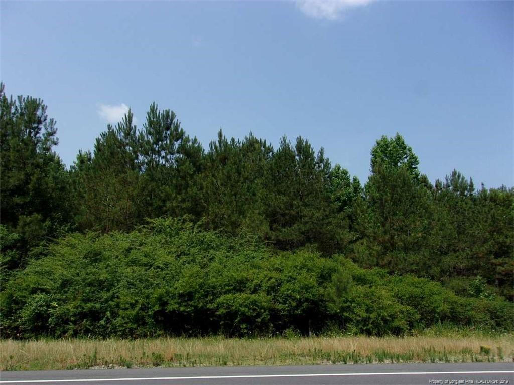 Lot 43 Jefferson Davis Highway - Photo 1