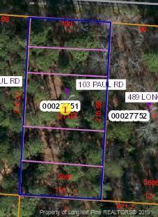 103 Paul Road, West End, NC 27376 (MLS #611203) :: The Rockel Group