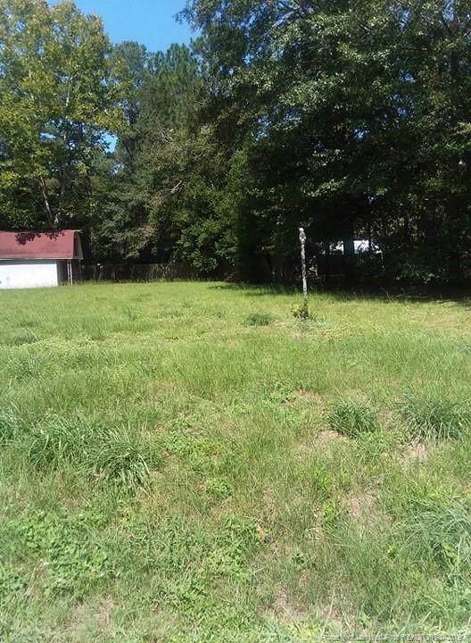 1013 Hemlock Drive, Fayetteville, NC 28304 (MLS #616409) :: Weichert Realtors, On-Site Associates