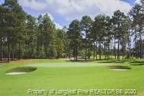 54 Plantation Drive, Southern Pines, NC 28387 (MLS #623955) :: Weichert Realtors, On-Site Associates