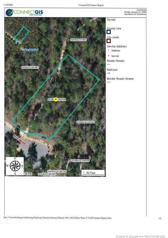Blue Water Court, Wagram, NC 28396 (MLS #624349) :: Weichert Realtors, On-Site Associates
