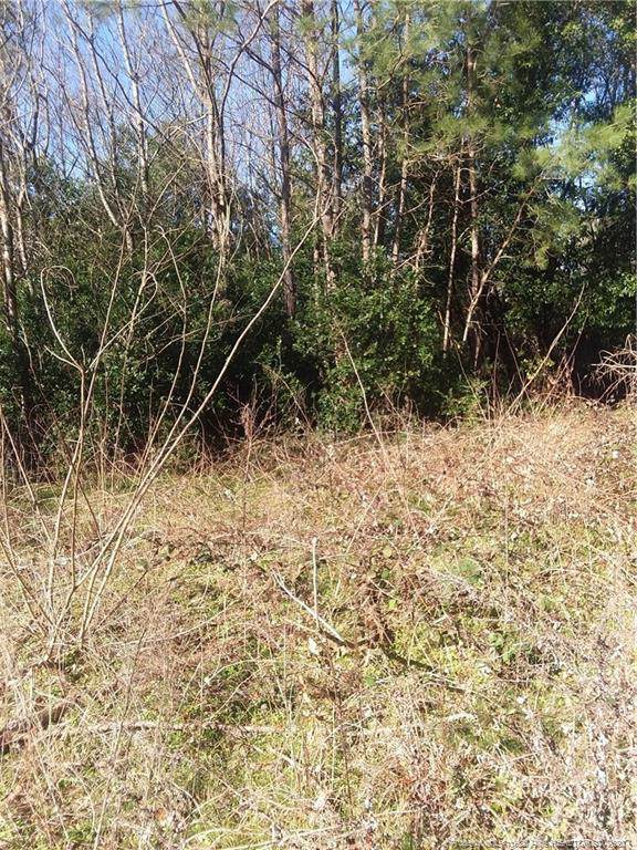Golf Course Road, Raeford, NC 28376 (MLS #625183) :: Weichert Realtors, On-Site Associates