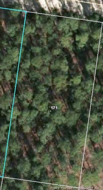 171 Pine Oak - Photo 1