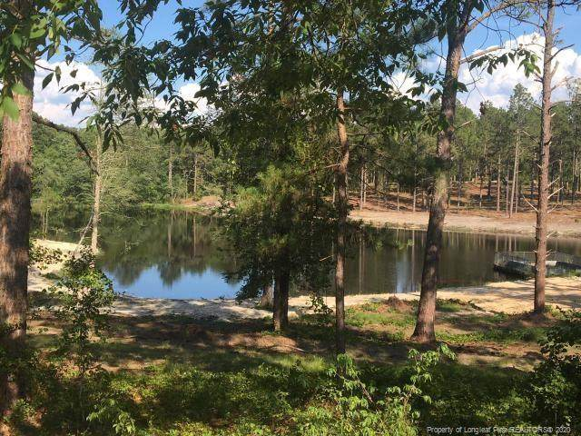4095 Carthage Road, West End, NC 27376 (MLS #632411) :: The Signature Group Realty Team