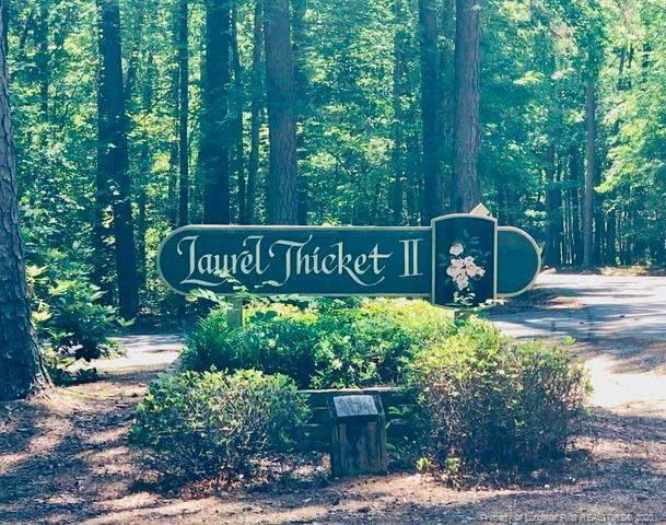 4008 Deer Track Trail, Sanford, NC 27332 (MLS #637199) :: Weichert Realtors, On-Site Associates