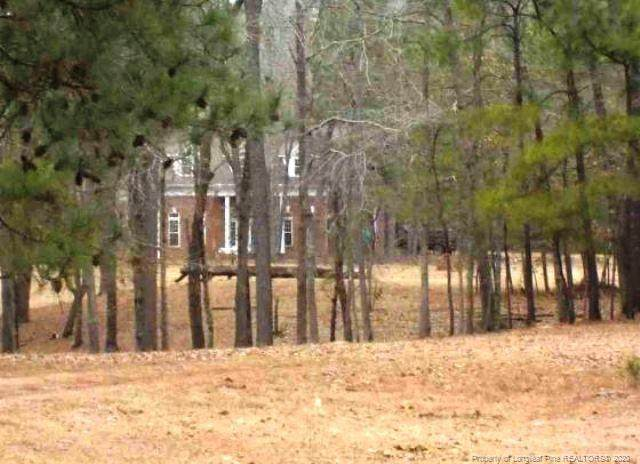 2267 Elliot Farm Road, Fayetteville, NC 28311 (MLS #641660) :: Towering Pines Real Estate