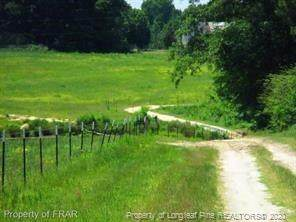 Circle T Drive, Lillington, NC 27546 (MLS #644170) :: Moving Forward Real Estate