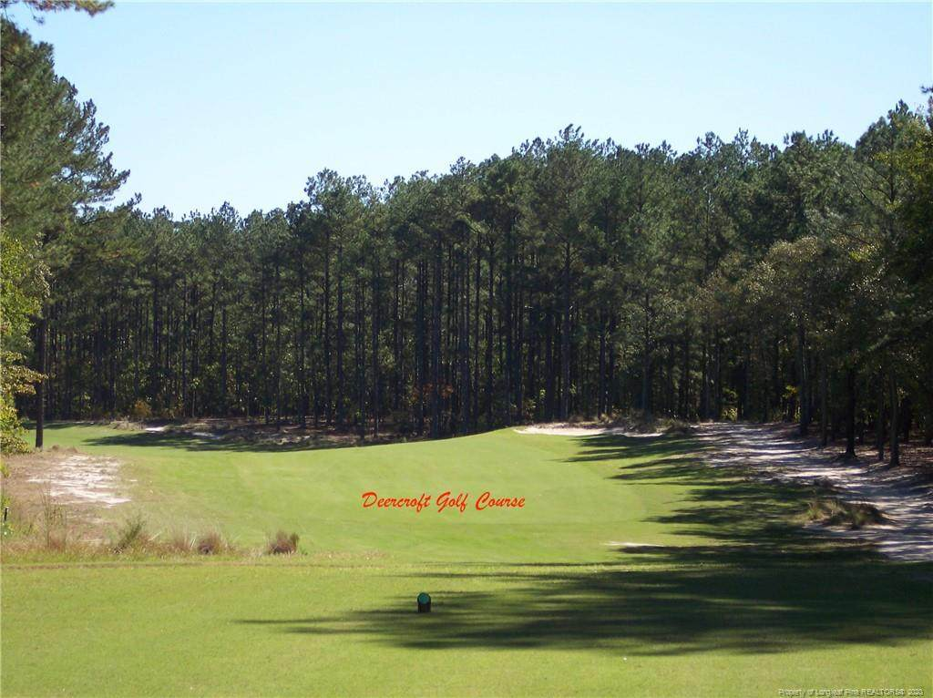 #8 Peach Orchard Road - Photo 1