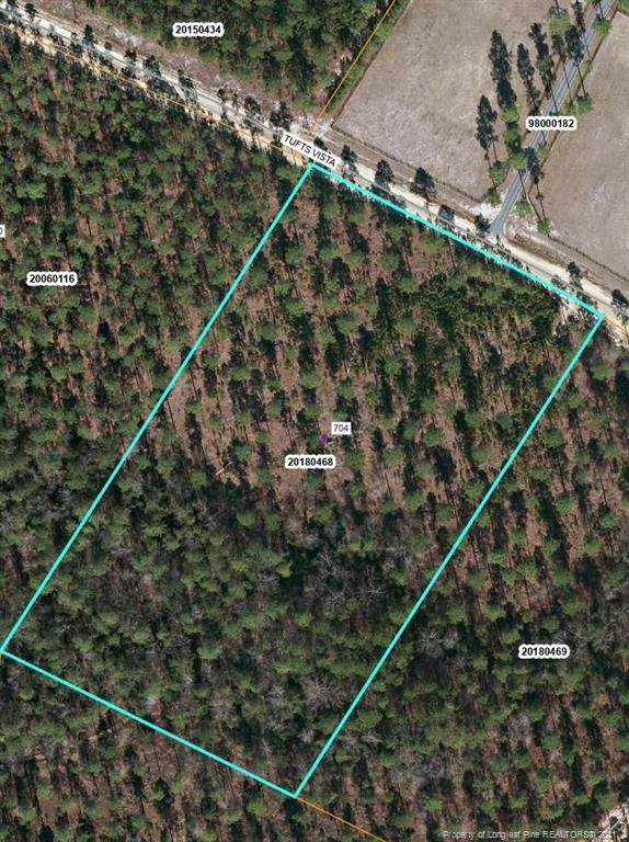 704 Tufts Vista, Jackson Springs, NC 27281 (MLS #649161) :: On Point Realty