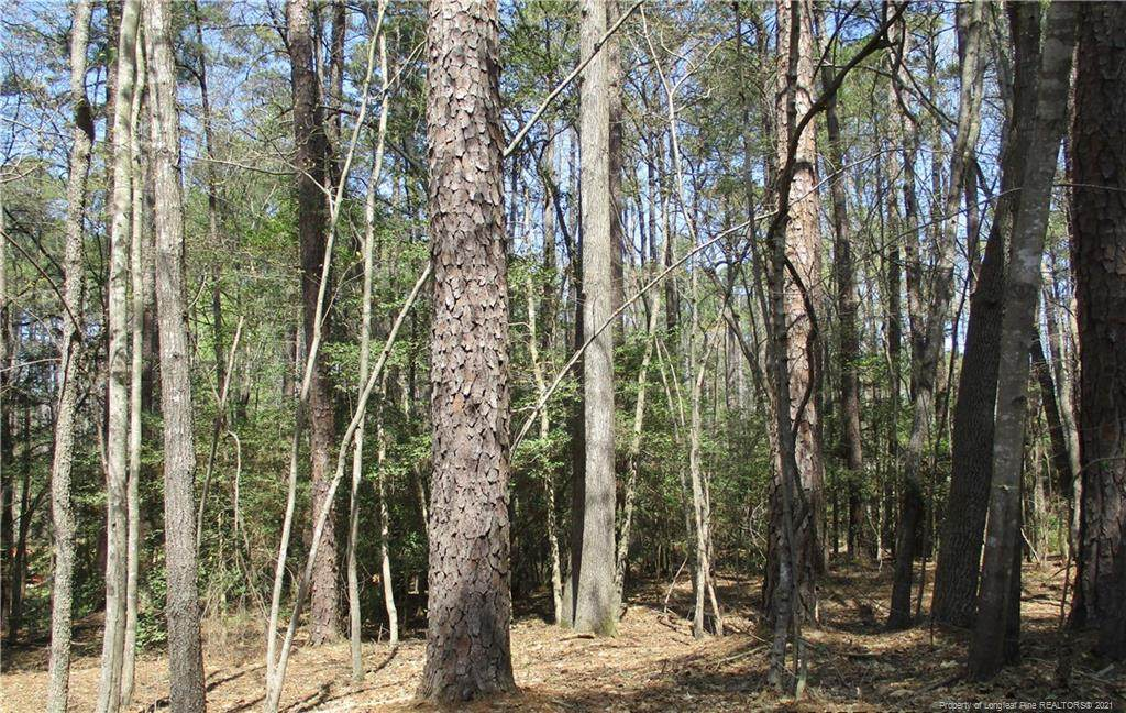 1099 Woodridge Trail - Photo 1