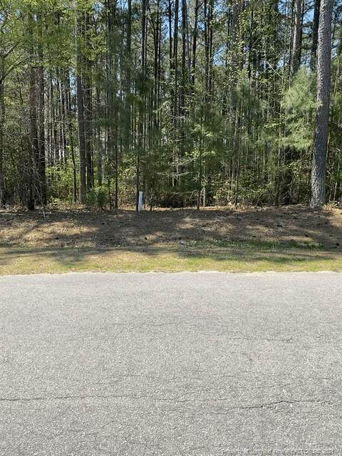 35 Barons (112) Run W, Spring Lake, NC 28390 (MLS #653526) :: Freedom & Family Realty