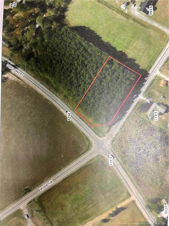 Old Lowery Road, Red Springs, NC 28383 (MLS #654024) :: The Signature Group Realty Team