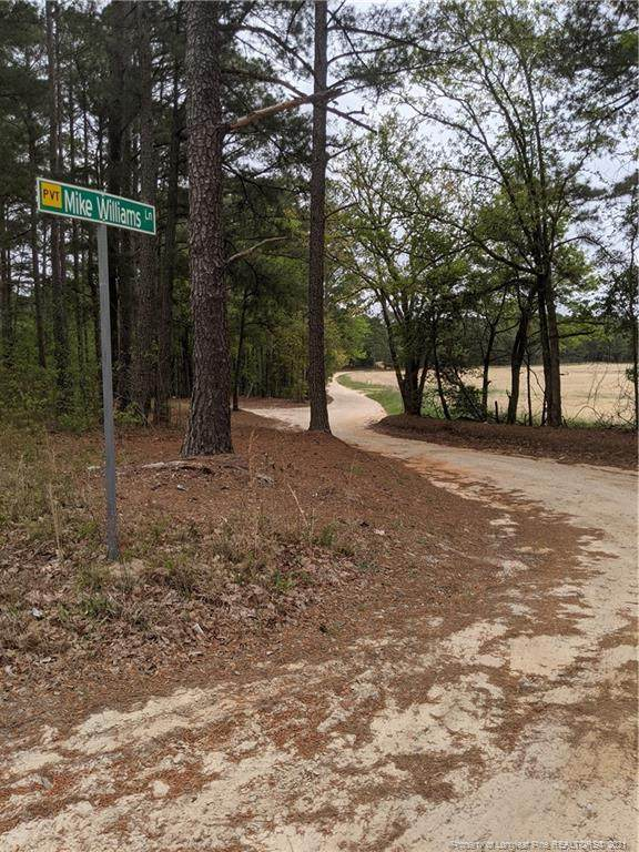 Mike Williams Lane, Bunnlevel, NC 28323 (MLS #655982) :: The Signature Group Realty Team