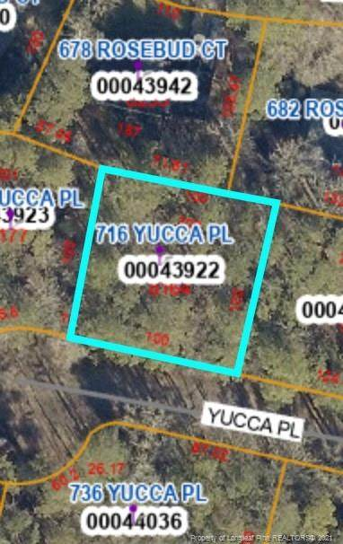 716 Yucca Place, Vass, NC 28394 (MLS #658817) :: Freedom & Family Realty