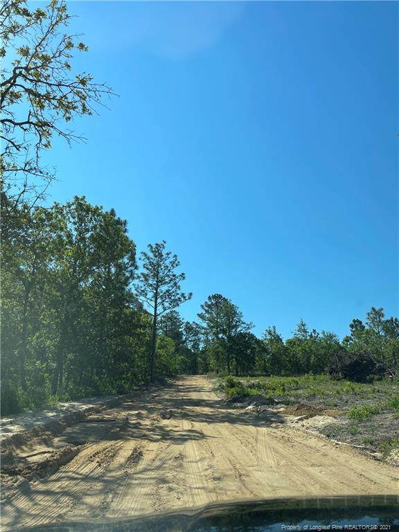 Pinewood Road, Sanford, NC 27332 (MLS #659737) :: Freedom & Family Realty