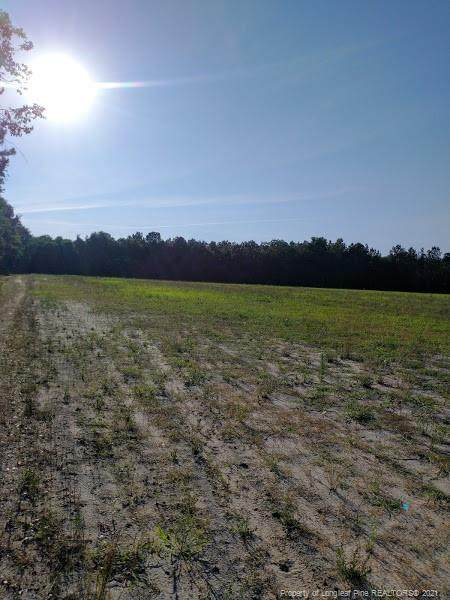 90 Acres Ruth Vinson Road, Autryville, NC 28318 (MLS #659901) :: EXIT Realty Preferred