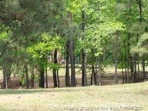 2267 Elliot Farm Road, Fayetteville, NC 28311 (MLS #663334) :: Moving Forward Real Estate