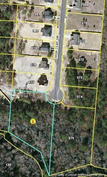 Lot 10 High Leaf Drive, Raeford, NC 28376 (#666897) :: The Helbert Team