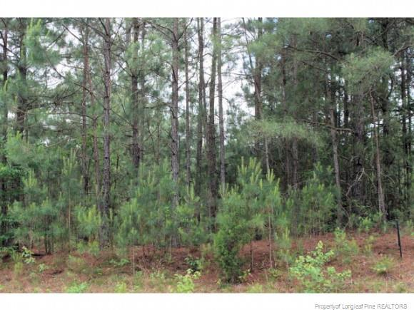 Lot A-12 Ponderosa Trail, Cameron, NC 28326 (MLS #495840) :: The Signature Group Realty Team