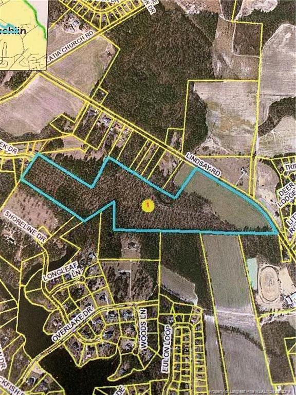 Lindsay Road, Raeford, NC 28376 (MLS #603417) :: Weichert Realtors, On-Site Associates