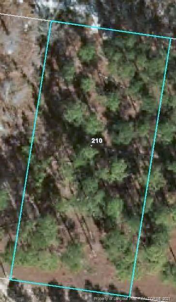210 Pine Oak - Photo 1