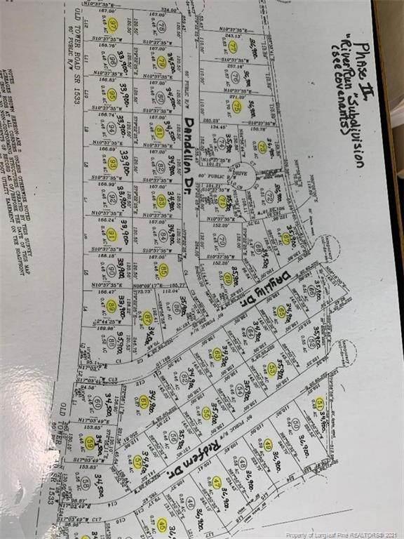 Dandelion Drive, Lumberton, NC 28360 (#627386) :: The Blackwell Group
