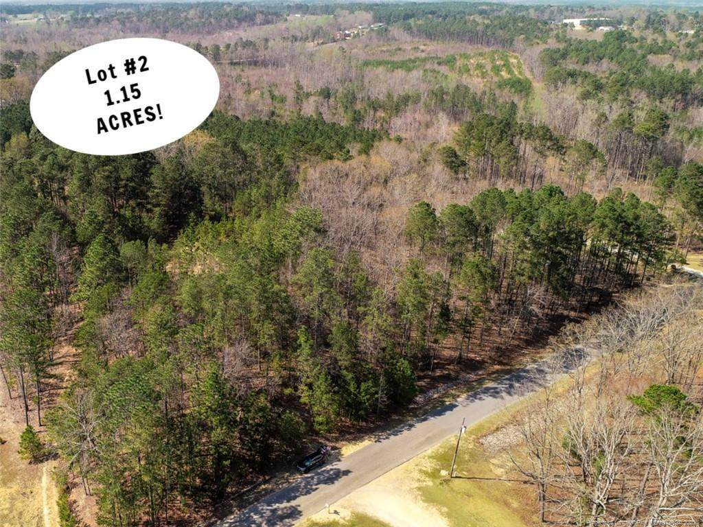 Lot 2 Manor Hills State Rd Road - Photo 1