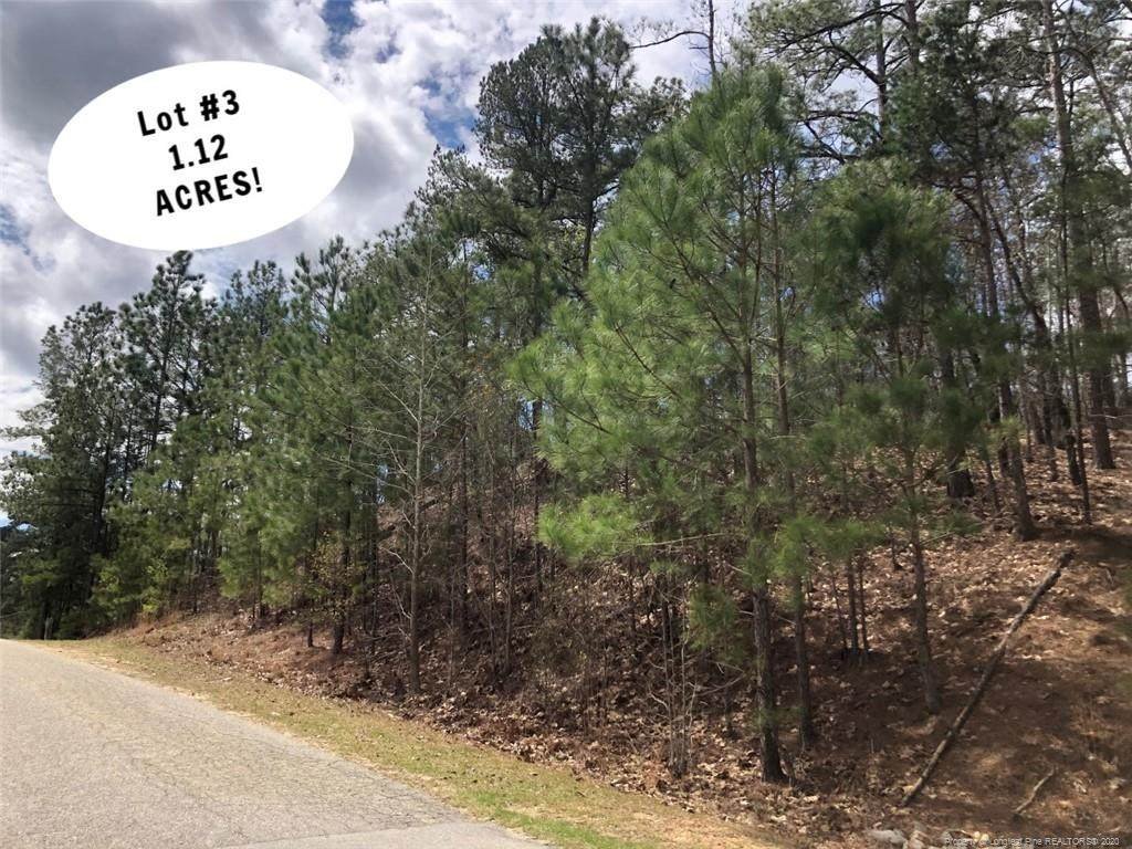 Lot 3 Manor Hills State Rd Road - Photo 1