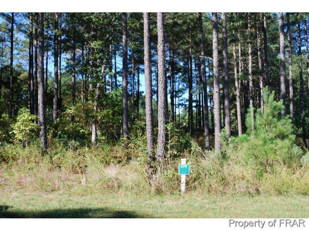 45 Broadlake (479) Lane - Photo 1