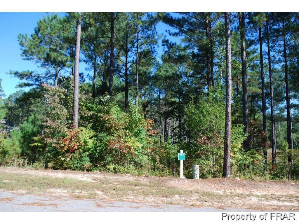 132 Broadlake (634) Lane - Photo 1