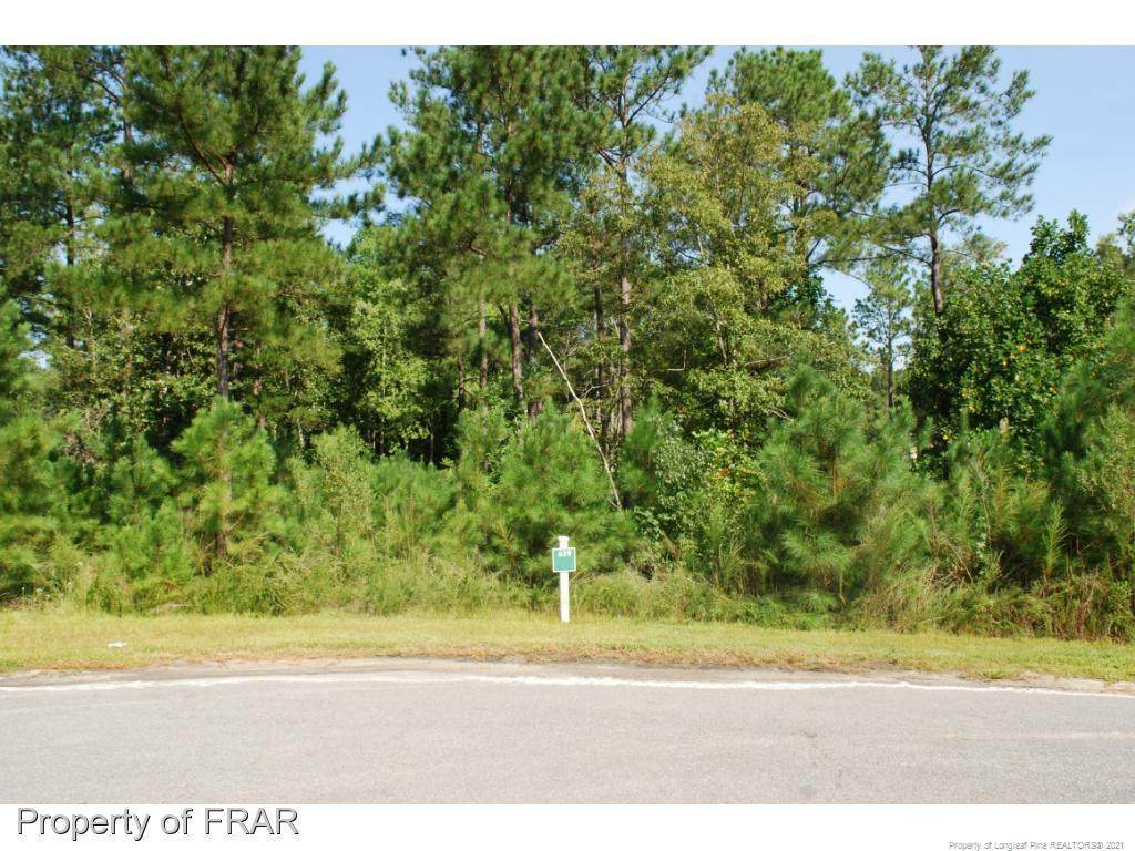 222 Broadlake (639) Lane - Photo 1