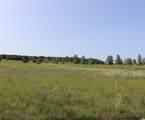1386 Long Lake Drive - Photo 5