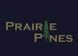 303 Pine Drive - Photo 6
