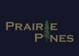306 Prairie Drive - Photo 6