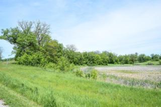 Lot 1 Blk 2 Woodhaven, Vergas, MN 56587 (MLS #16-2629) :: JK Property Partners Real Estate Team of Keller Williams Inspire Realty