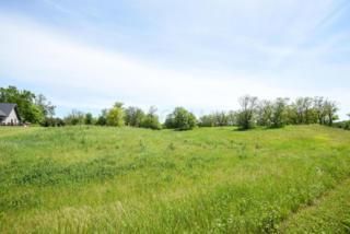 Lot 2 Blk 2 Woodhaven, Vergas, MN 56587 (MLS #16-2630) :: JK Property Partners Real Estate Team of Keller Williams Inspire Realty