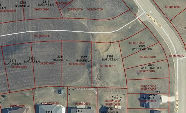 2311 Nature Lane, Hawley, MN 56549 (MLS #17-3973) :: JK Property Partners Real Estate Team of Keller Williams Inspire Realty