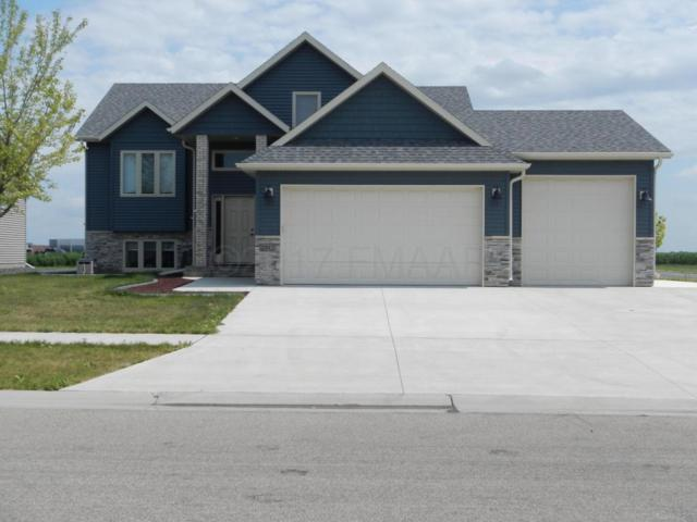 2312 42ND Street S, Moorhead, MN 56560 (MLS #17-4384) :: FM Team