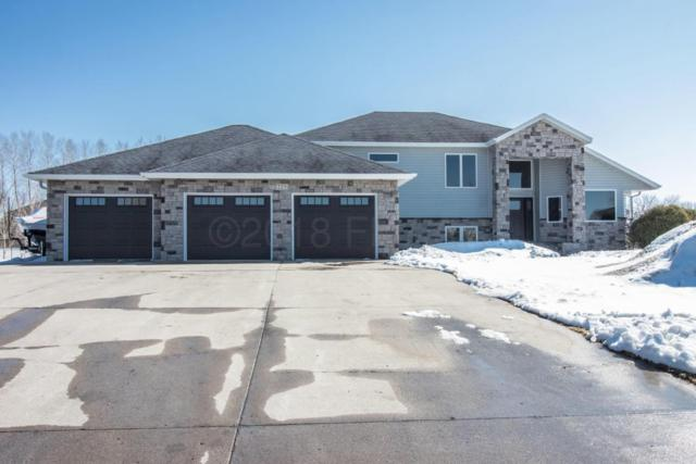 225 Chestnut Drive, Horace, ND 58047 (MLS #18-1721) :: FM Team