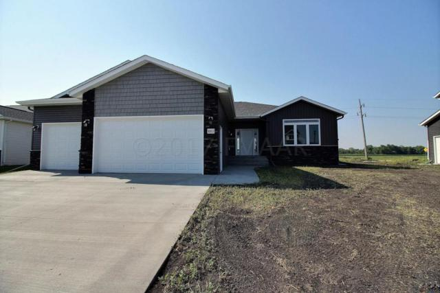 1053 Wildflower Lane W, West Fargo, ND 58078 (MLS #18-2899) :: FM Team