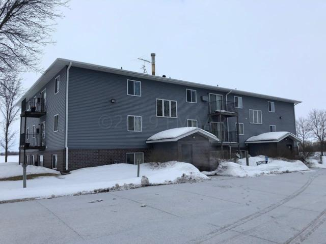 Address Not Published, Twin Valley, MN 56584 (MLS #19-1146) :: FM Team