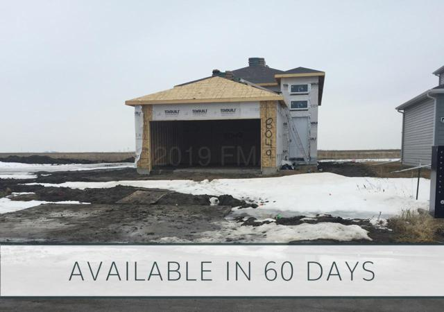 8049 Goldfinch Drive, Horace, ND 58047 (MLS #19-1974) :: FM Team
