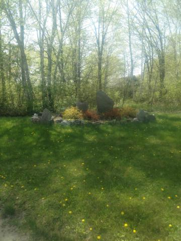 2843 River Road, Pine River, MN 56474 (MLS #19-3136) :: FM Team