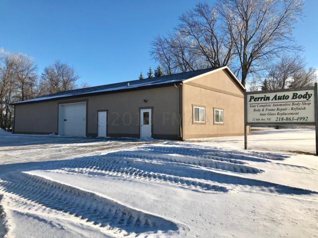 Address Not Published, Pelican Rapids, MN 56572 (MLS #19-366) :: FM Team