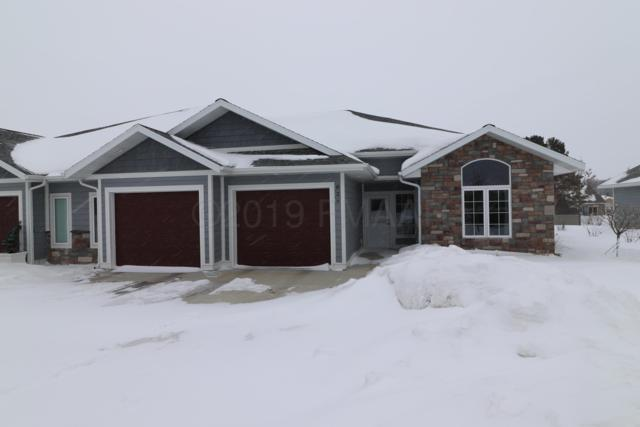 826 Whitetail Lane, Detroit Lakes, MN 56501 (MLS #19-418) :: FM Team