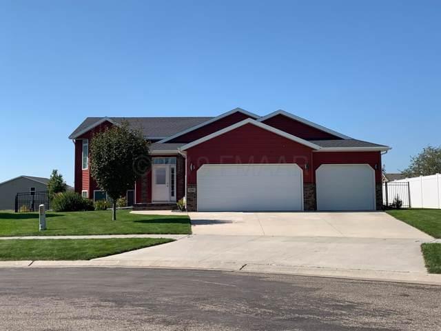 4591 Prairie Drive S, Moorhead, MN 56560 (MLS #19-5724) :: FM Team